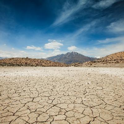 土壤保湿剂-土壤锁水剂-东保絮凝剂