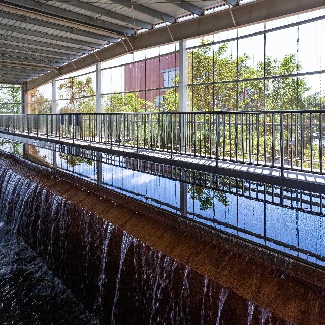 污水厂水处理絮凝剂-东保絮凝剂